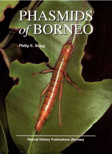 Phasmids of Borneo by Phil Bragg - cover
